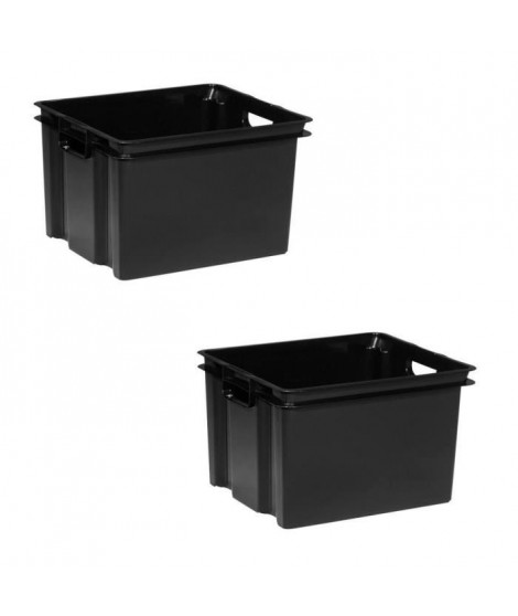 ALLIBERT Lot de 2 bacs de rangement Vulcano 30 L