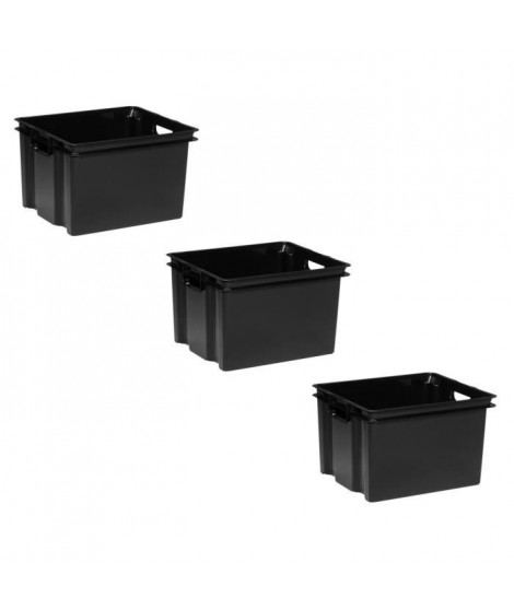 ALLIBERT Lot de 3 bacs de rangement Vulcano 30 L