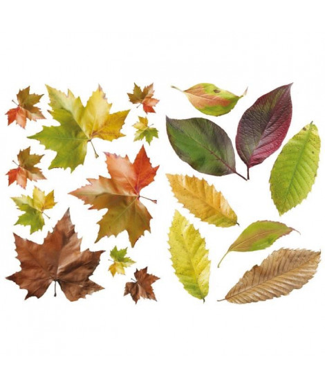 PLAGE Stickers adhésif mural Taille S - Feuilles de saison2 planches 29,7 x 21 cm, divers motifs