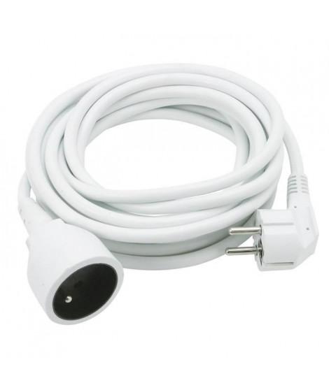 COGEX Rallonge électrique 10m 16A 3x1,5mm²