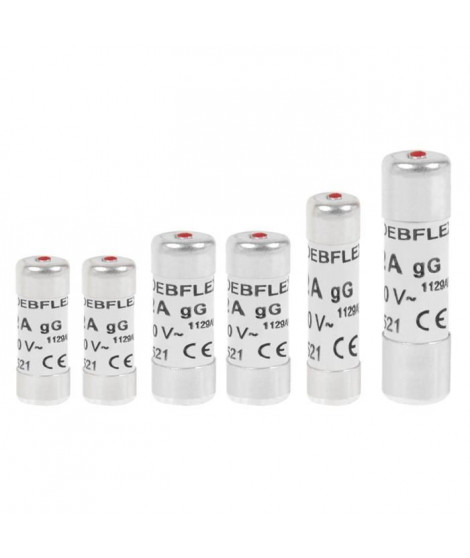 DEBFLEX Lot de 6 Fusibles 10 A / 16 A / 20 A / 32 A