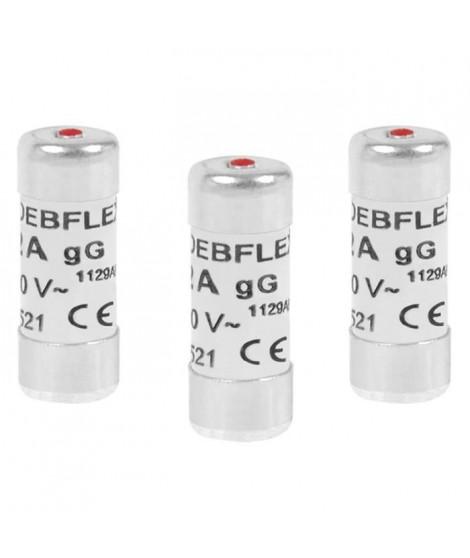 DEBFLEX Lot de 3 Fusibles 10,3x25,8 16 A