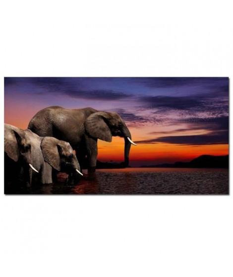 ELEPHANTS Tableau déco 60x30cm