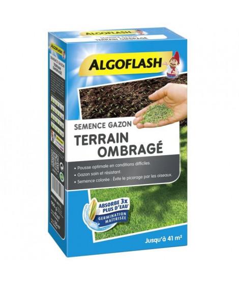 ALGOFLASH Semences gazon terrain ombragé - 900 g