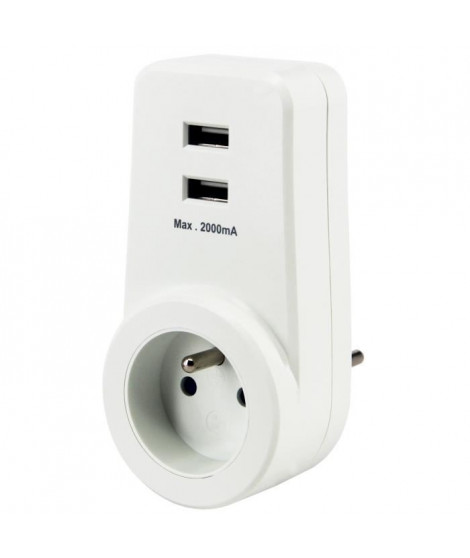 CHACON Prise 16 A avec 2 ports USB blanc