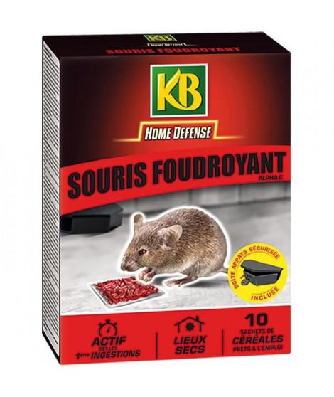 KB Souris foudroyant céréales - 10 x 10 g