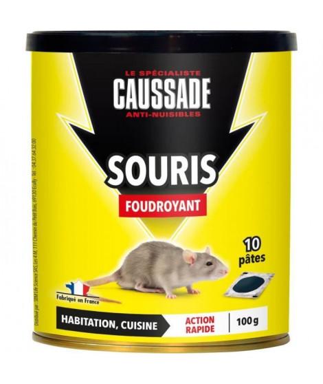 CAUSSADE Boîte 10 pâtes appât pret a l'emploi - Pour souris - 100 g