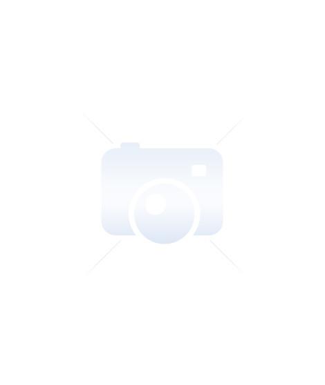 INOXIBAR 62824 Couvercle Expert - 24 cm - Acier inoxydable