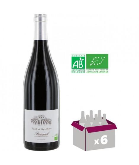 Vignoble des Cotelles - St Nicolas de Bourgueil - 2010 - Rouge - 75 cl x 6