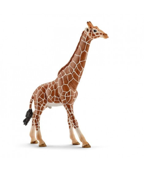 Schleich Figurine 14749 - Animal de la savane - Girafe mâle