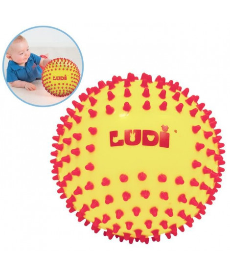 LUDI Balle Sensorielle Bicolore - Diametre 15 cm