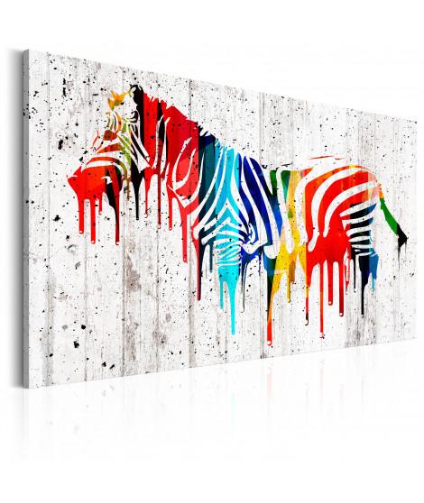 Tableau - Zèbre colorée