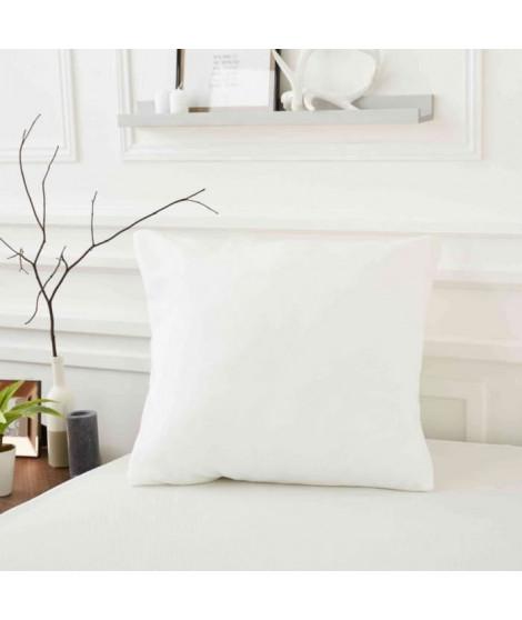 SWEETNIGHT Protege oreiller ALLERGOSTOP 65x65 cm, housse intégrale, anti-acariens et anti-punaises de lit (Lot de 2)