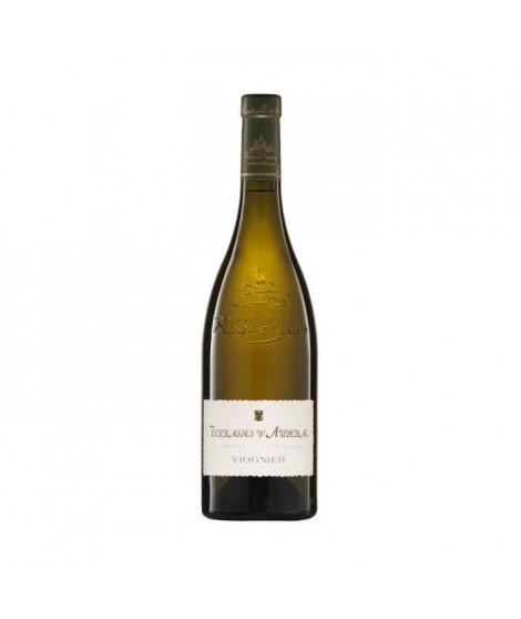 Terrasses d'Aupenac 2016 Pays d'Oc - Vin blanc du Languedoc