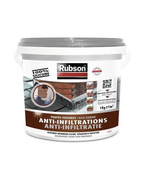 RUBSON Anti-infiltrations Toutes Toitures Gris 1kg