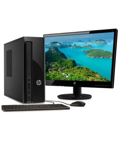 HP PC de bureau-260-a110nf - 4Go de RAM - Windows 10-AMD E2-7110- AMD Radeon R2- Disque dur 1 To + Ecran 21.5""
