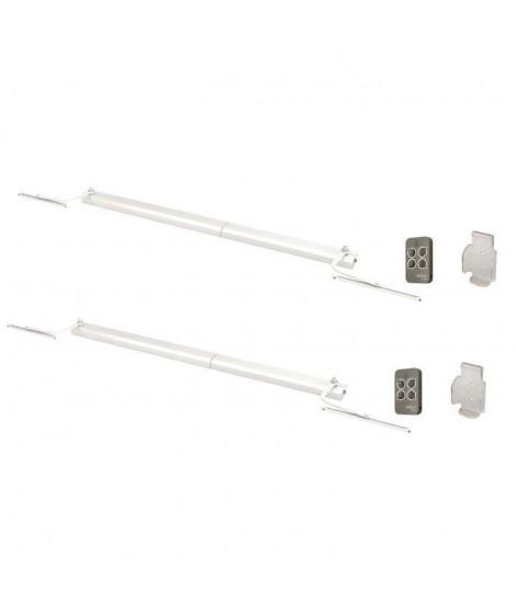 DIAGRAL BY ADYX Pack de 2 motorisations pour volets a 1 ou 2 battants a commande sans fil 230 V