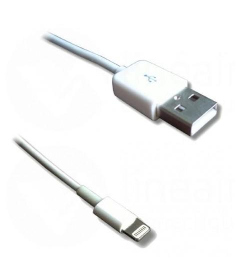 Câble Lightning mâle / USB mâle