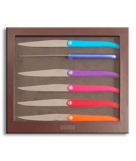 Coffret 6 Couteaux Laguiole ACIDULE Multicolor