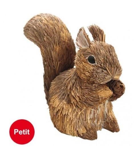 Petit écureuil 10x14 cm marron