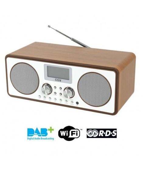 CGV DR30i Radio internet