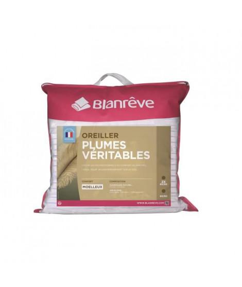 BLANREVE Lot de 2 oreillers PLUMES 60x60cm