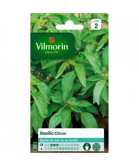 VILMORIN Basilic citron