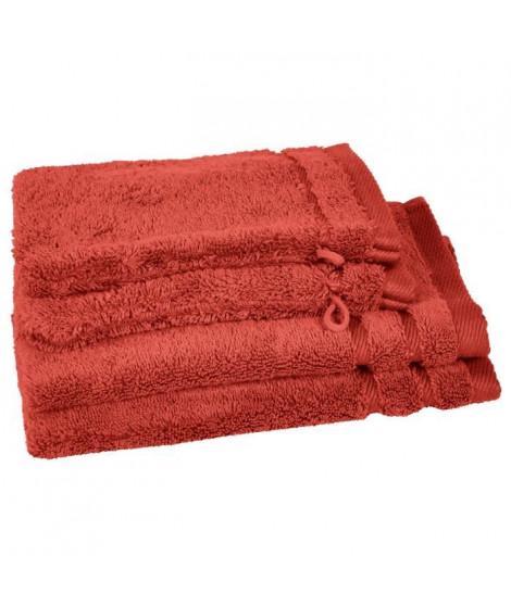 VENT DU SUD Lot 2 serviettes invité 30x50 cm + 2 gants Callisto - Cuivre