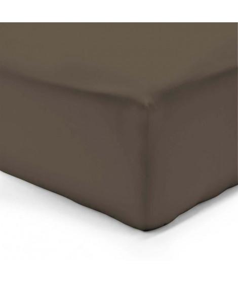 VISION Drap housse 160x200 + 25 cm chocolat