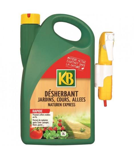 KB Désherbant jardin, cours, allées - Pret a L'emploi - 3 L