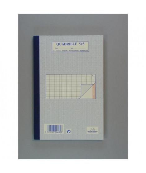 50 Feuilles de facture autocollantes - 21 cm x 14,8 cm x 0,9 cm - Petits carreaux