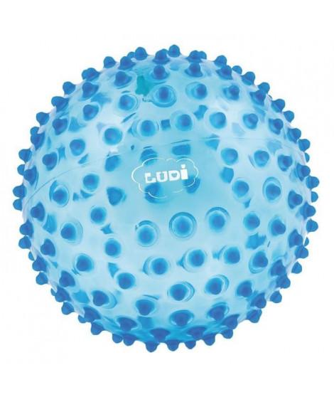 LUDI Balle Sensorielle Bleu - Diametre 20 cm