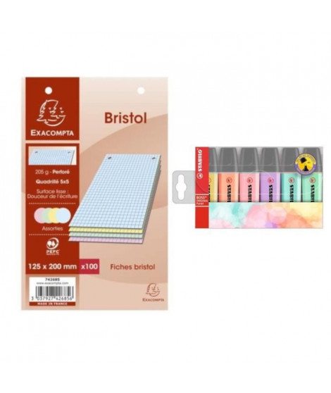 Pack 100 Fiches Bristol Blanches 12,5x20 cm + STABILO 6 Surligneurs Pastel