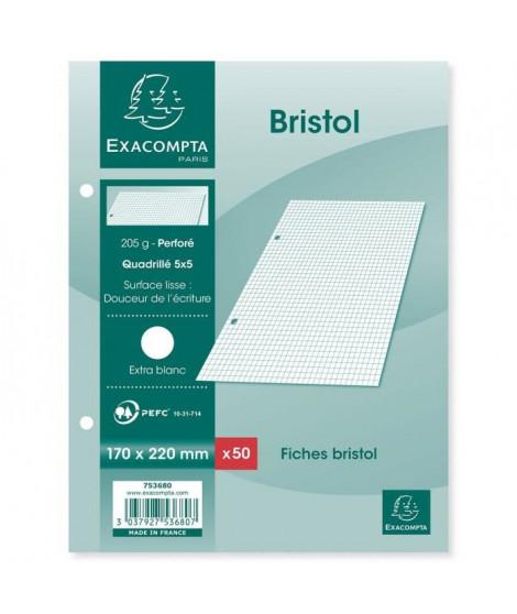 EXACOMPTA - 50 fiches Bristol blanches - 17 x 22 - Perforées - 5 x 5 - Papier P.E.F.C 205G