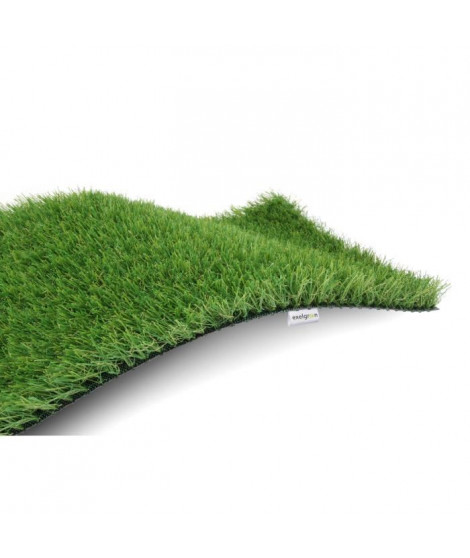 EXELGREEN Gazon synthétique Garden - 30 mm - 1,00 x 3,00 m