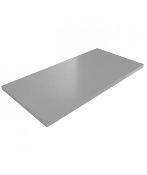 POLYREY Plan de travail Stratifié HPL Hydrofuge L 307 x P 65 x H 3,8 cm métal brossé