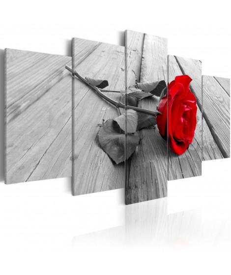 Tableau - Rose sur bois