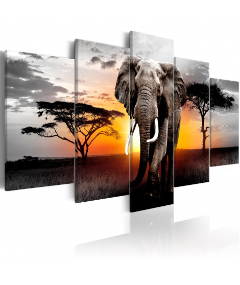 Tableau - Elephant at Sunset