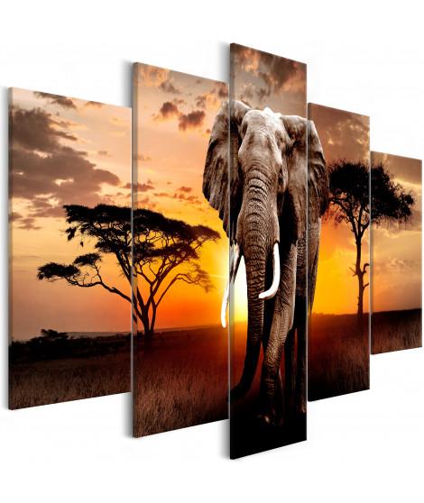 Tableau - Wandering Elephant (5 Parts) Wide