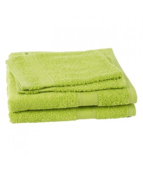 JULES CLARYSSE Lot de 2 serviettes + 2 gants de toilette Élégance - Vert